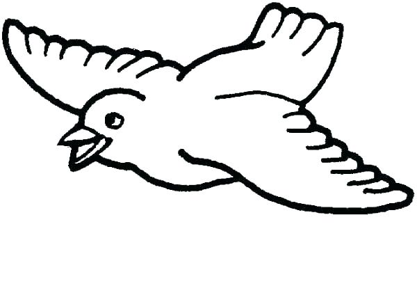 600x424 Bird Printable Coloring Pages Bird Coloring Pages Bird Coloring