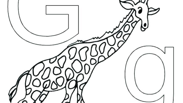 750x425 Farm Animal Alphabet Coloring Pages Wildlife Animals Zoo