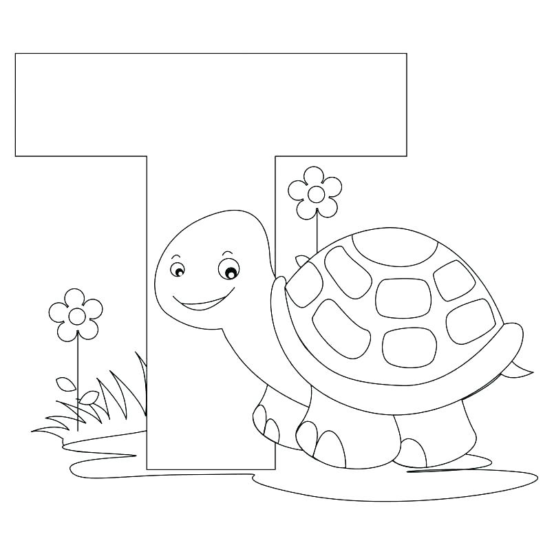 805x805 Animal Alphabet Coloring Pages