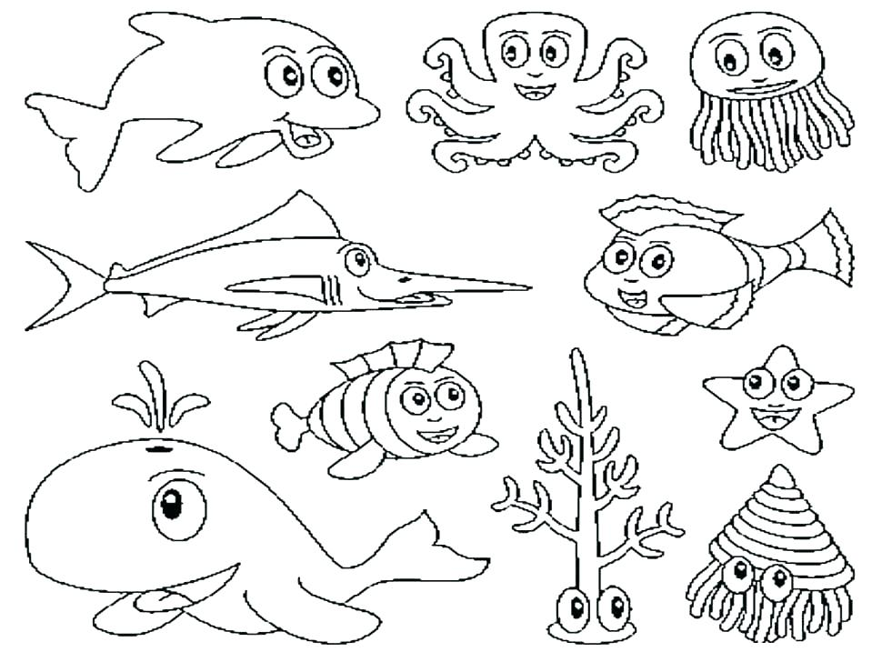 970x728 Plant Cell Coloring Page Animal Cell Coloring Pages Animal Cell