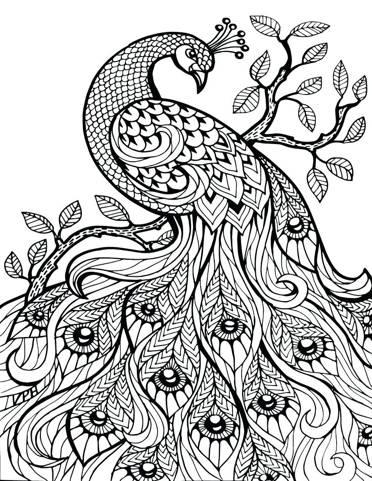 736x952 Animal Coloring Pages For Adults Adult Coloring Pages Animal