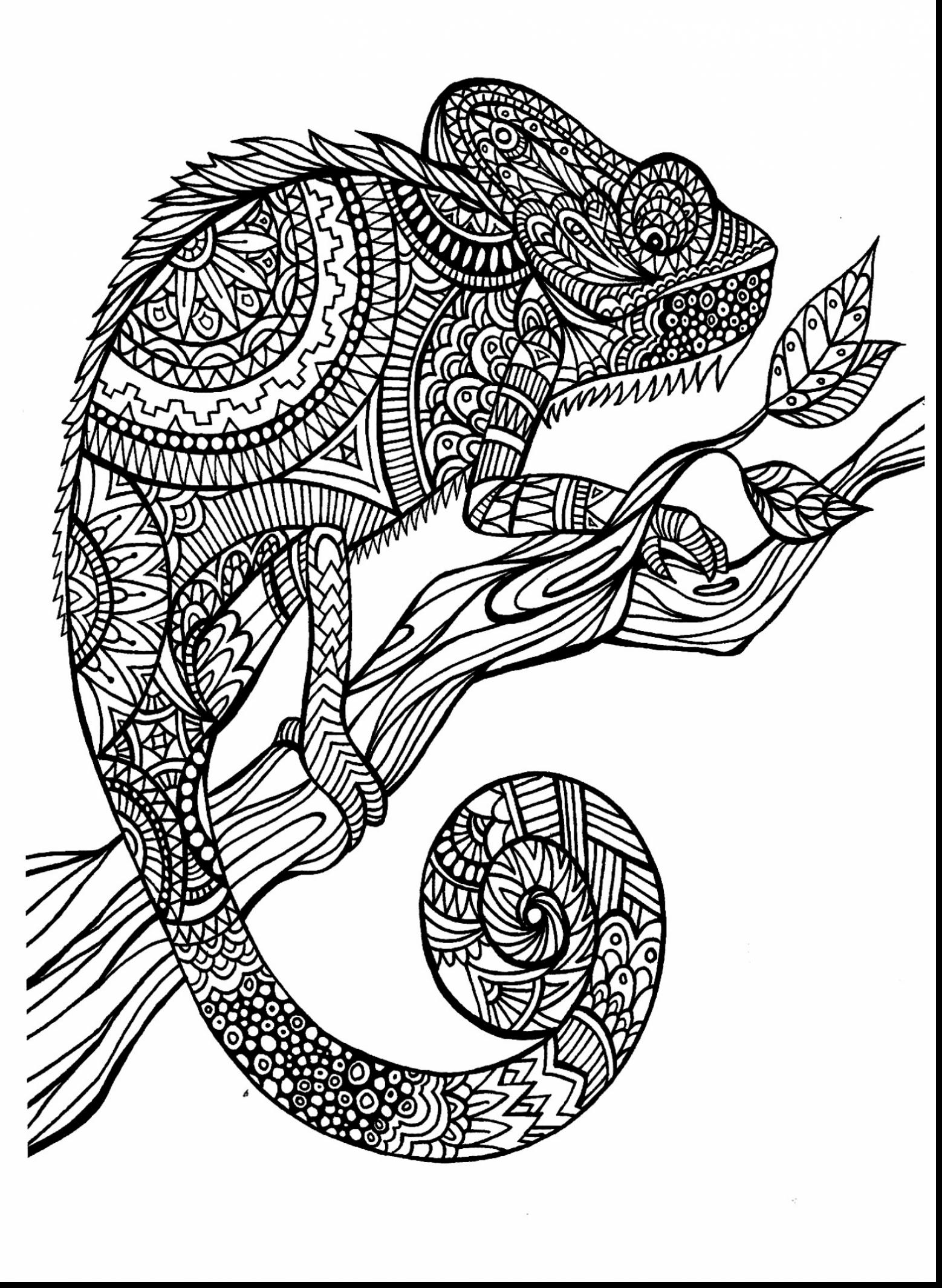 1558x2129 Animal Coloring Pages For Adultstricate Animals Best