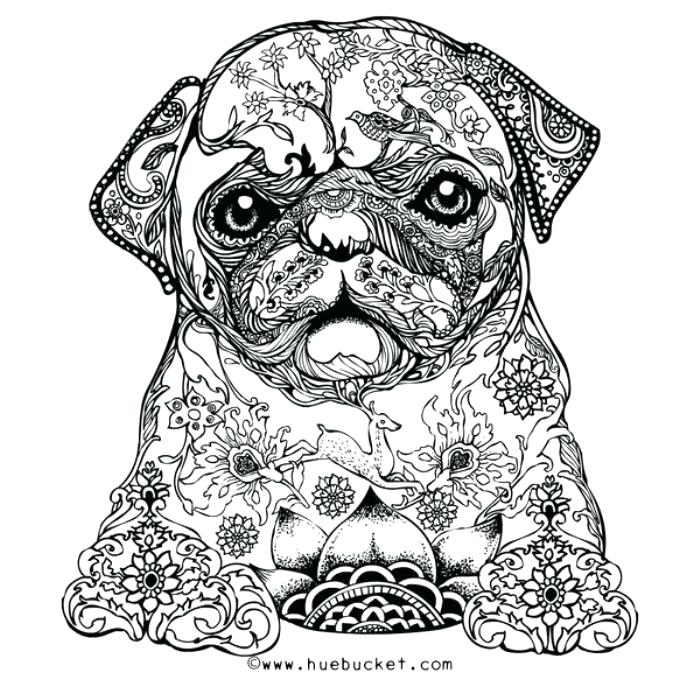 Animal Coloring Pages For Adults at GetDrawings.com | Free ...
