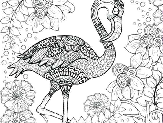563x425 Detailed Animal Coloring Pages Mandala Color Pages Detailed