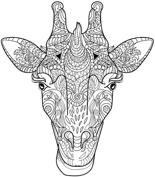 640x731 Free Printable Coloring Pages For Adults Animals Printables And Menu