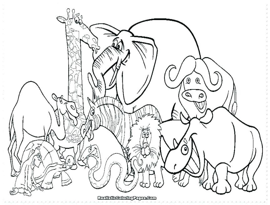863x656 Printable Animal Coloring Pages For Adults