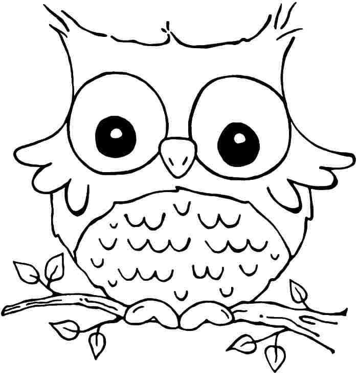 700x734 Owl Coloring Sheets Printable
