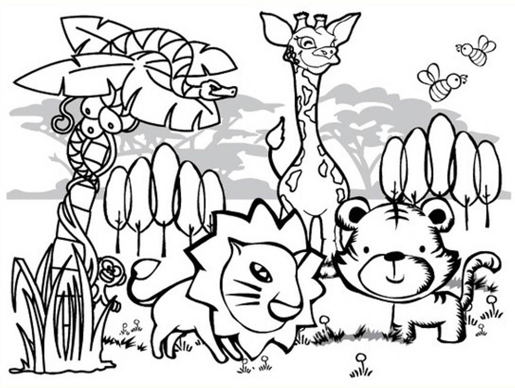 1020x768 Animal Coloring Sheet Rainforest Animal Coloring Pages Printable