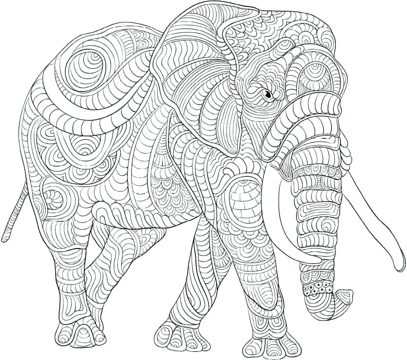 835x739 Cool Design Coloring Pages Cool Animal Coloring Pages Animal