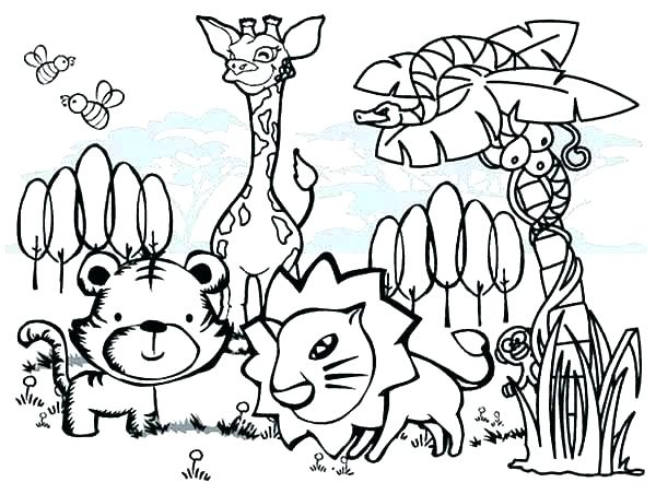 600x452 Australian Animal Coloring Pages Animals Colouring Pages Cool