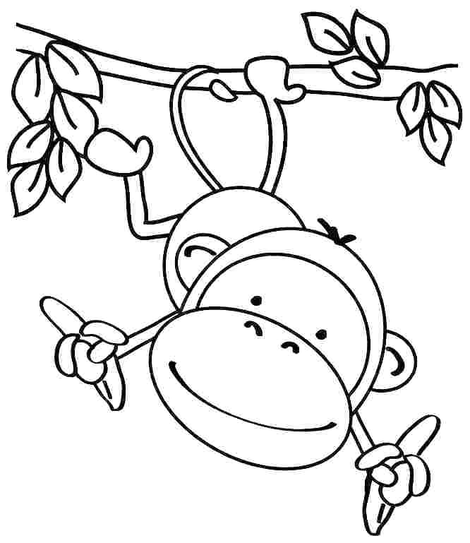 666x769 Easy Coloring Pages Toddlers Animal Coloring Pages
