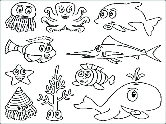 700x525 Sea Animal Coloring Pages Animal Coloring Pages For Toddlers
