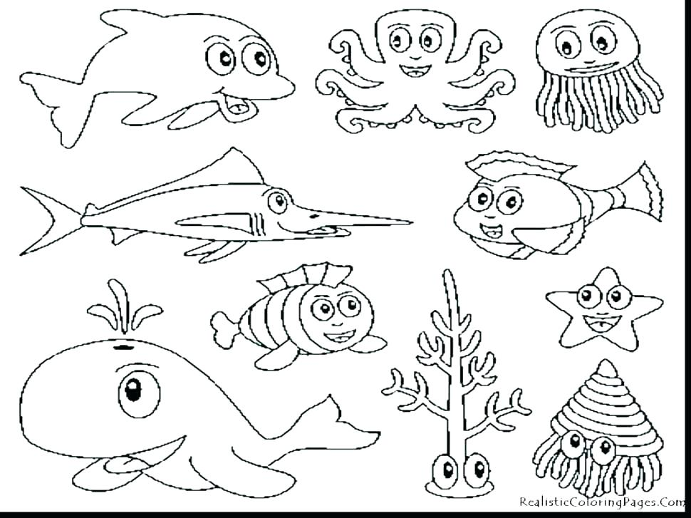 970x727 Sea Animals Coloring Pages Icontent