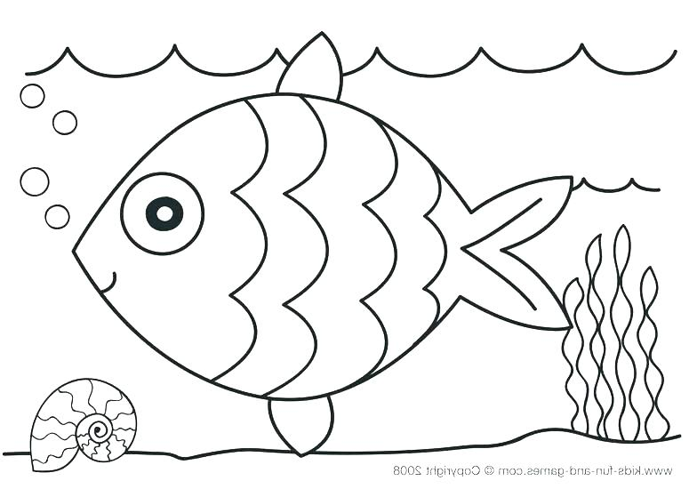 775x550 Animal Coloring Pages Preschoolers Ocean Coloring Pages