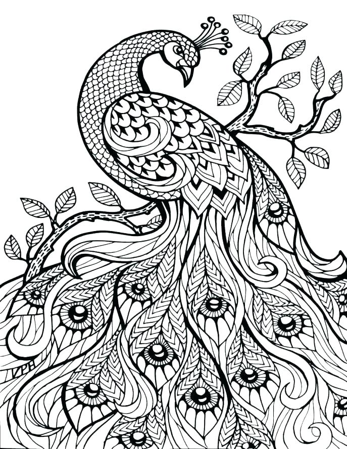 687x890 Detailed Animal Coloring Pages Detailed Animal Coloring Pages