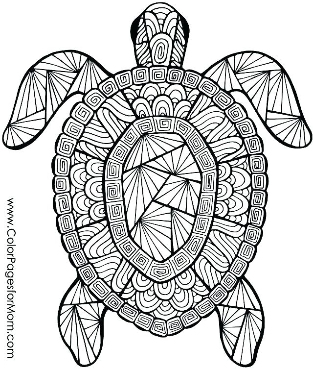 640x755 Free Coloring Pages Of Animals Free Printable Summer Coloring Free