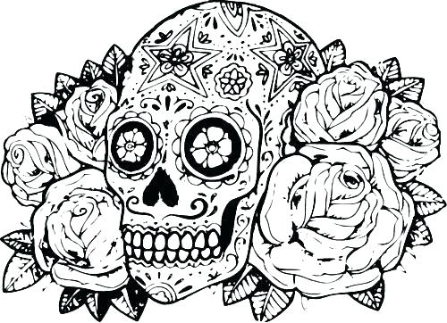 500x362 Hard Animal Coloring Pages Difficult Animals Coloring Pages
