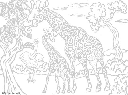 450x336 Hard Animal Pattern Coloring Pages