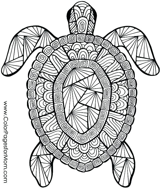 640x755 Coloring Pages Of Animals Coloring Pages For Kids Animals Animal