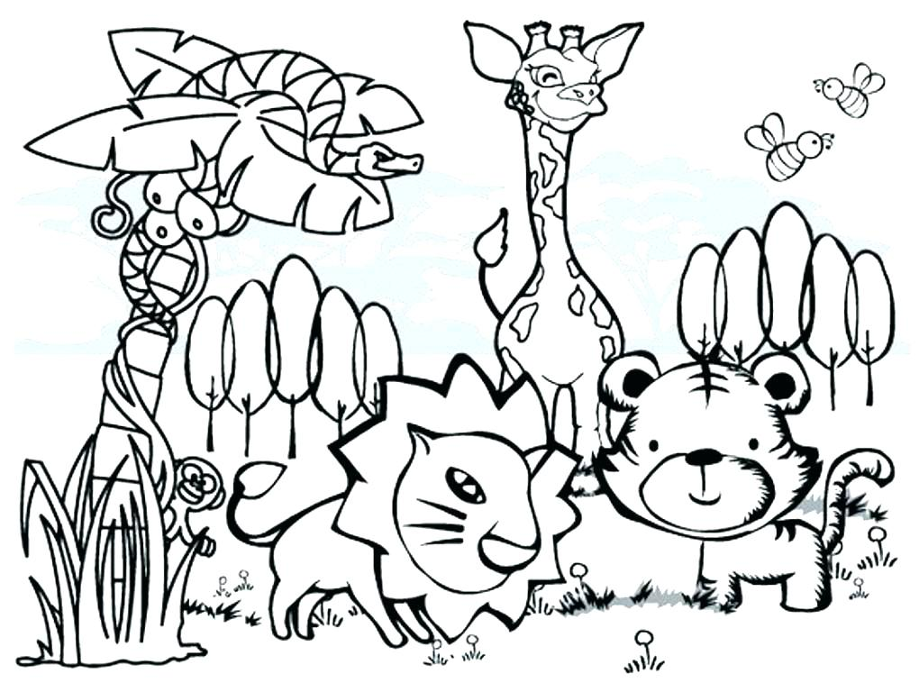 1020x768 Rainforest Animals Coloring Pages Coloring Pages Jungle Animals