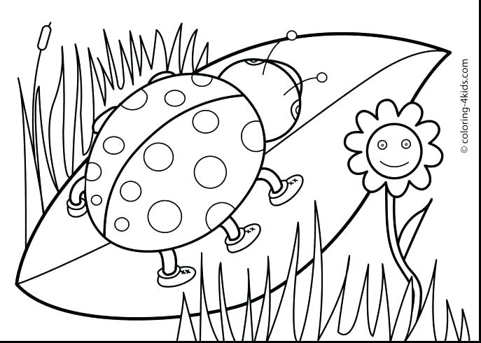 687x490 Coloring Pages For Kids Animals Coloring Pages Of Cute Animals