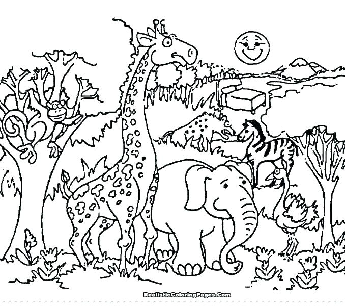 678x600 Wildlife Coloring Pages Coloring Book Zoo Animals Plus Coloring