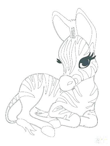 375x500 Animals Coloring Pages Online