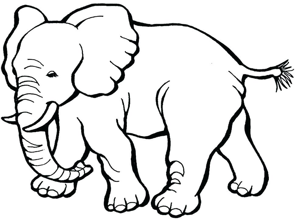 Animal Coloring Pages Pdf At Getdrawings Free Download