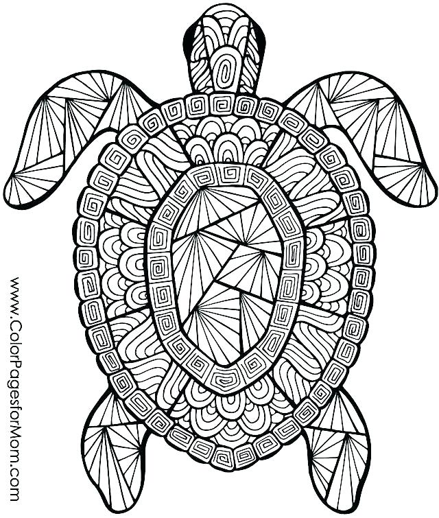 640x755 Free Printable Animal Coloring Pages Baby Farm Animals Coloring