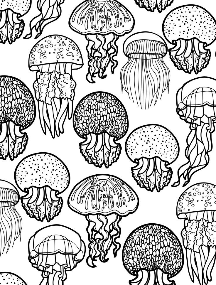 736x971 Free Printable Animal Coloring Pages For Adults