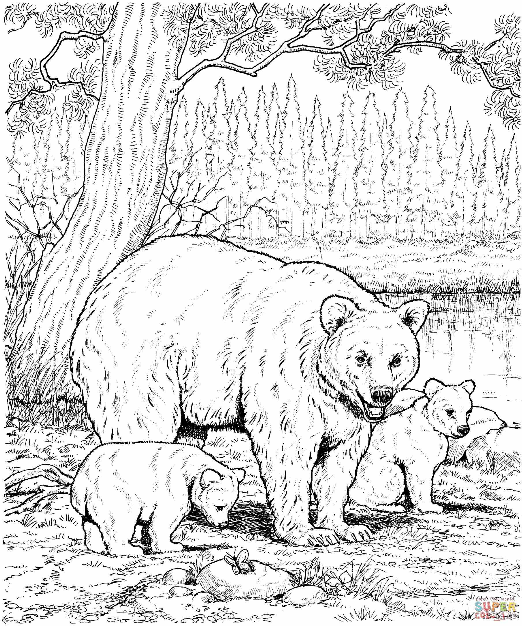 1809x2169 Hard Animal Coloring Pages