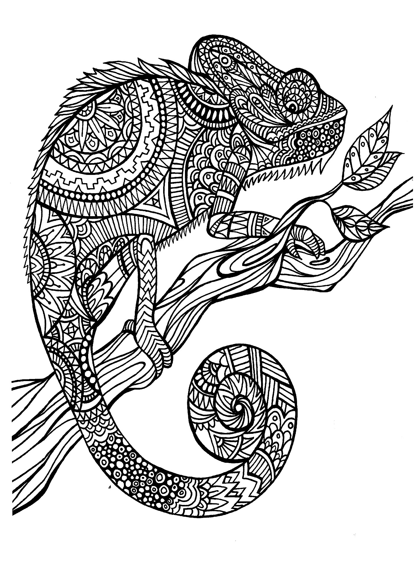 1417x1936 Adult Coloring Pages Animal Patterns Pony Printable