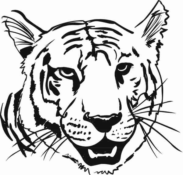 600x573 Tiger Face Coloring Pages Coloring Animal Heads Tiger Head