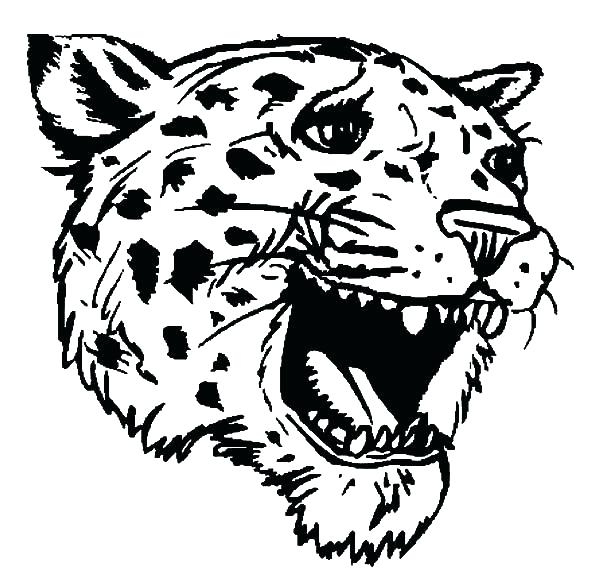 600x588 Jaguar Coloring Sheet Jaguar Coloring Pages Jaguar Head Coloring
