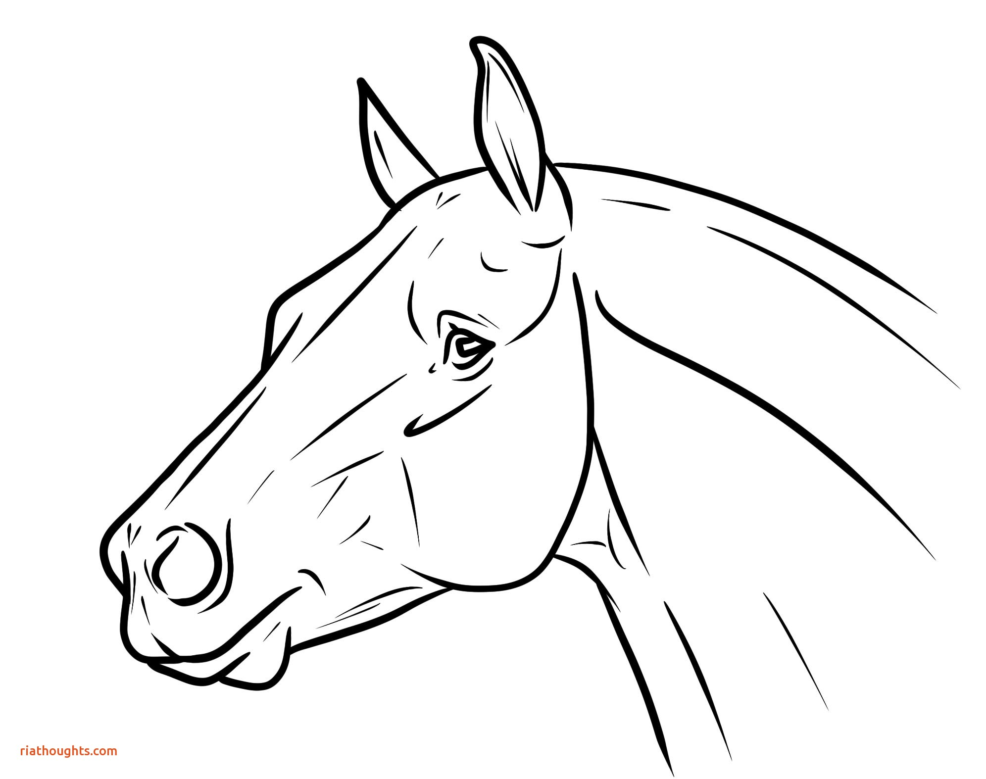 1992x1574 Unique Horse Head Coloring Pages Coloring
