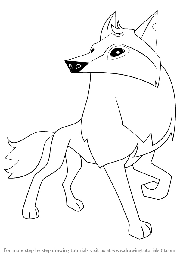 598x844 Learn How To Draw Arctic Wolf From Animal Jam