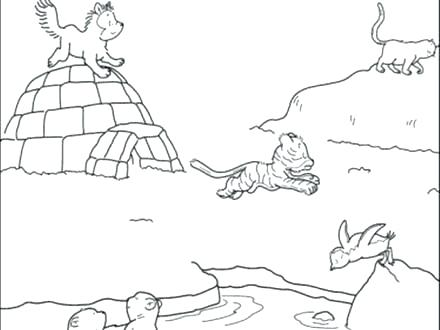440x330 Arctic Animal Coloring Pages Arctic Animal Coloring Pages Best