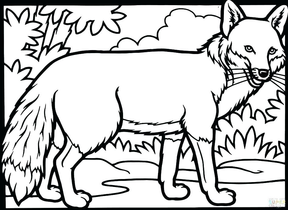 948x692 Arctic Fox Coloring Page The Mitten Coloring Pages Fox Coloring