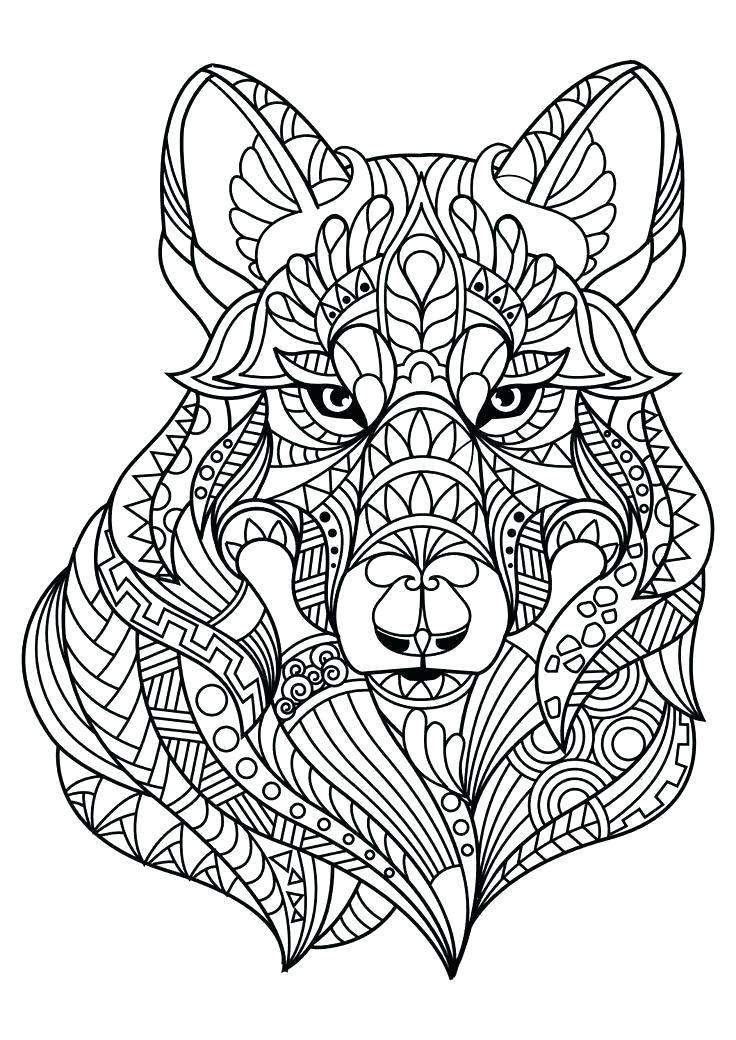 736x1040 Coloring Pages Animal Gorgeous Animal Pictures Preschool In Snazzy