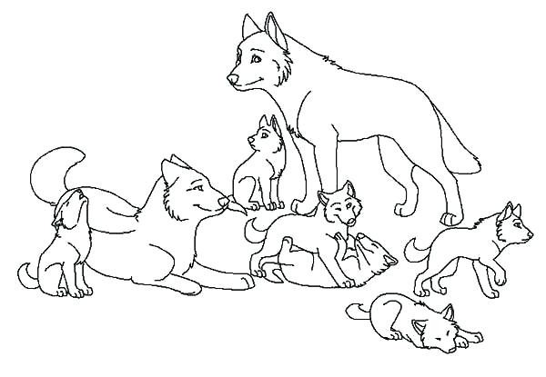 600x415 Coloring Pages Wolf Wolf Coloring Pages Arctic Wolf Coloring Page