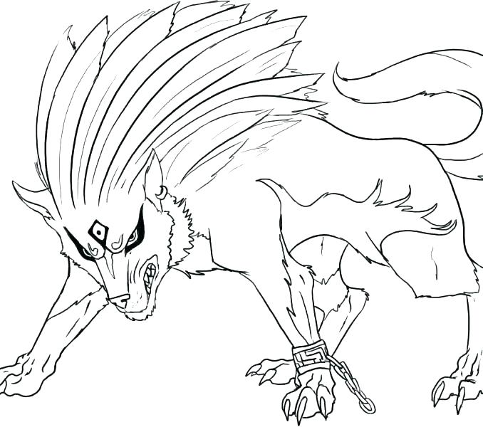 678x600 Wolf Coloring Also Big Bad Wolf Coloring Pages Free Arctic Wolf