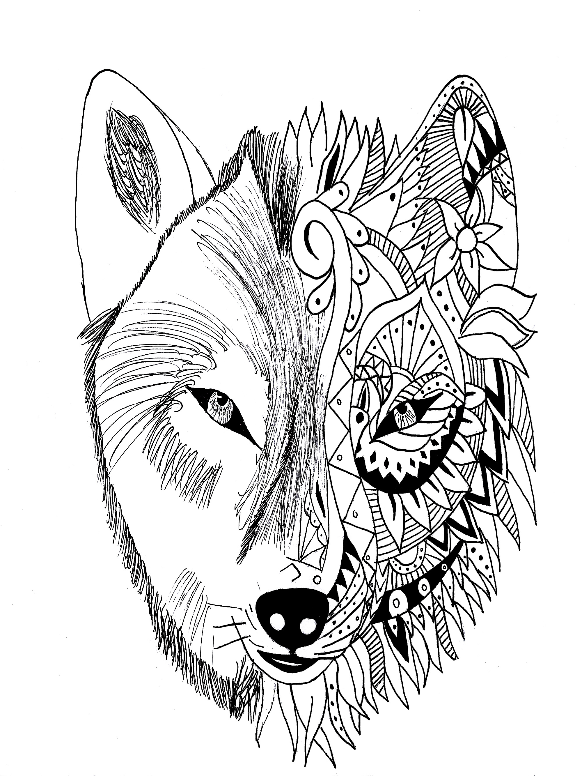 2000x2665 Zentangle Realistic Wolf Coloring Pages Free Printable Animals Pup