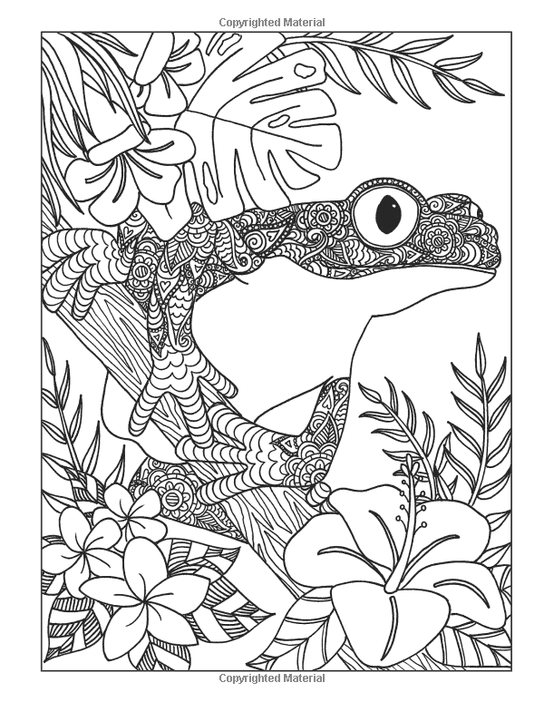 600x774 Inkspirations Animal Kingdom Captivating Coloring Designs