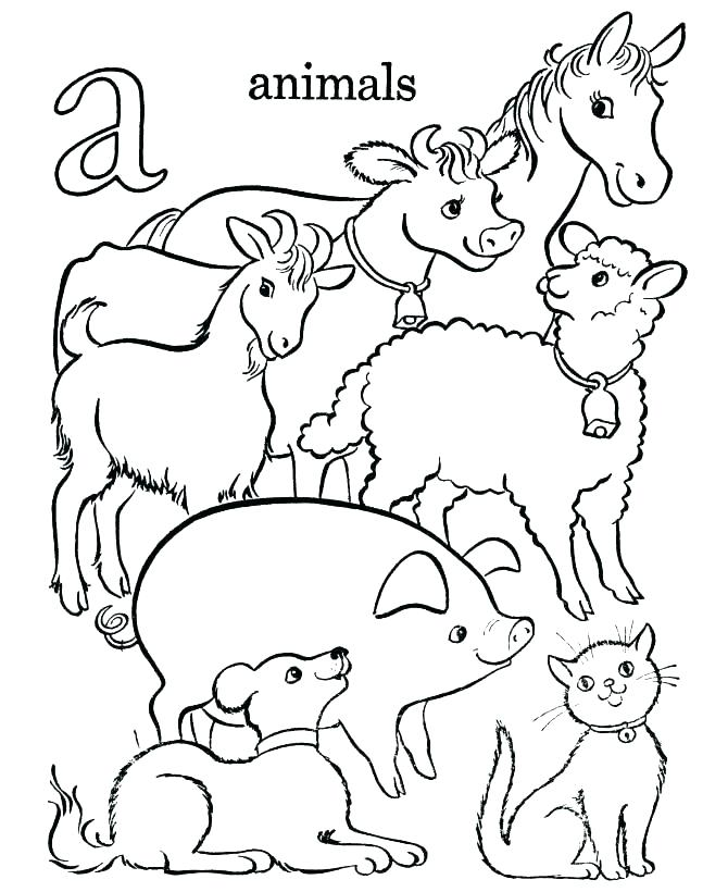 670x820 Animal Drawing At Free For Personal Use Animal Animal Coloring