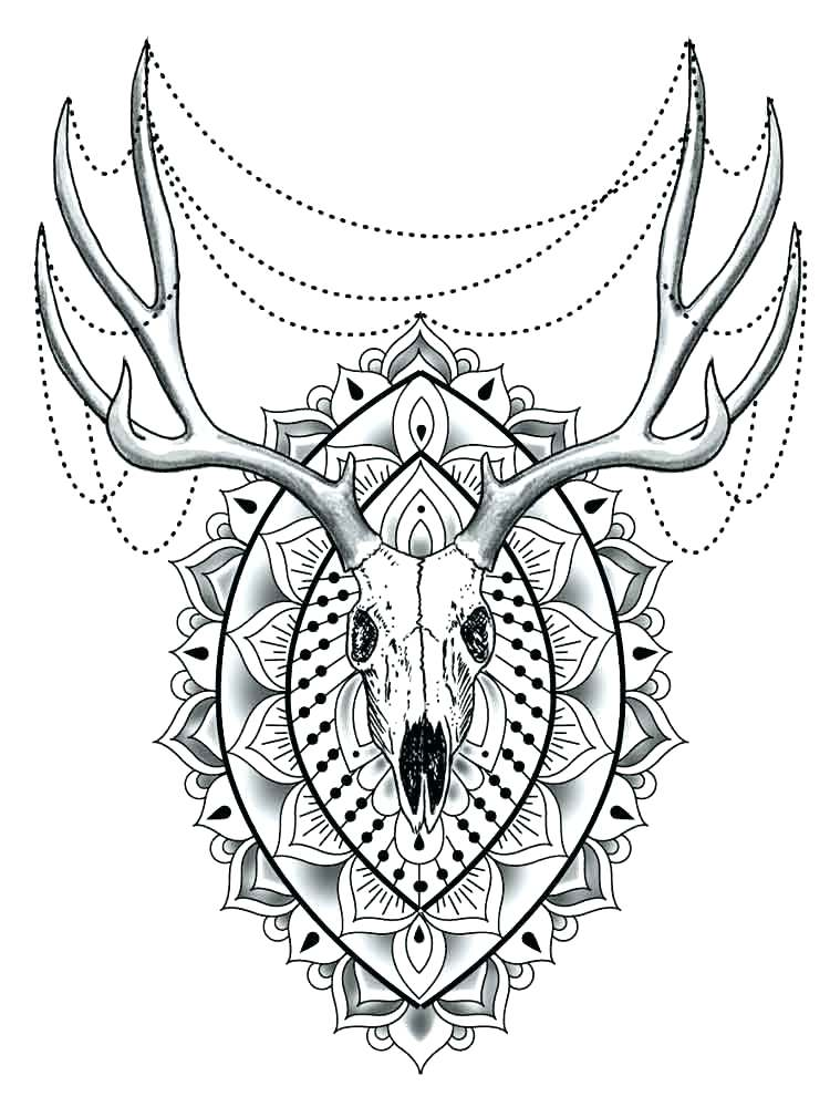 750x1000 Animal Mandala Coloring Pages Adults Difficult Animals Cute Monkey