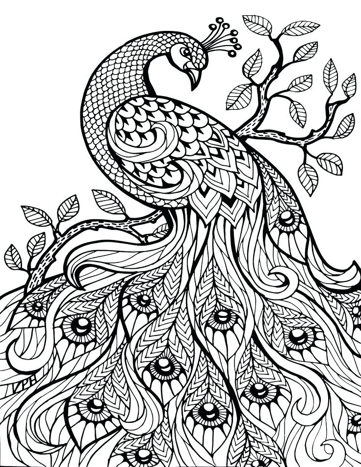 Animal Mandala Coloring Pages For Adults At GetDrawings Free Download