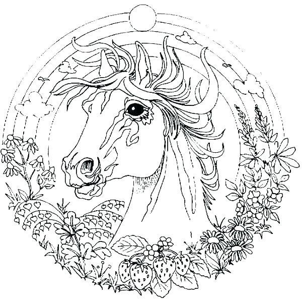 600x593 Animal Mandala Coloring Pages For Adults Cool Animal Coloring