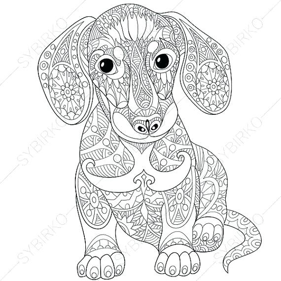 570x570 Animal Coloring Pages For Adults Detailed Animal Coloring Pages