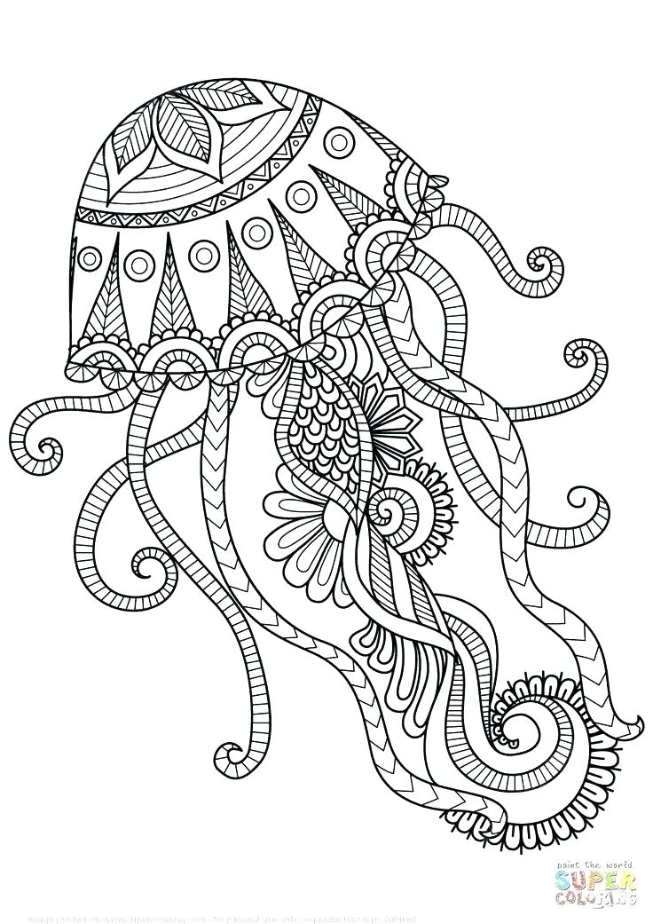 736x1041 Animal Mandala Coloring Book Together With Coloring Pages