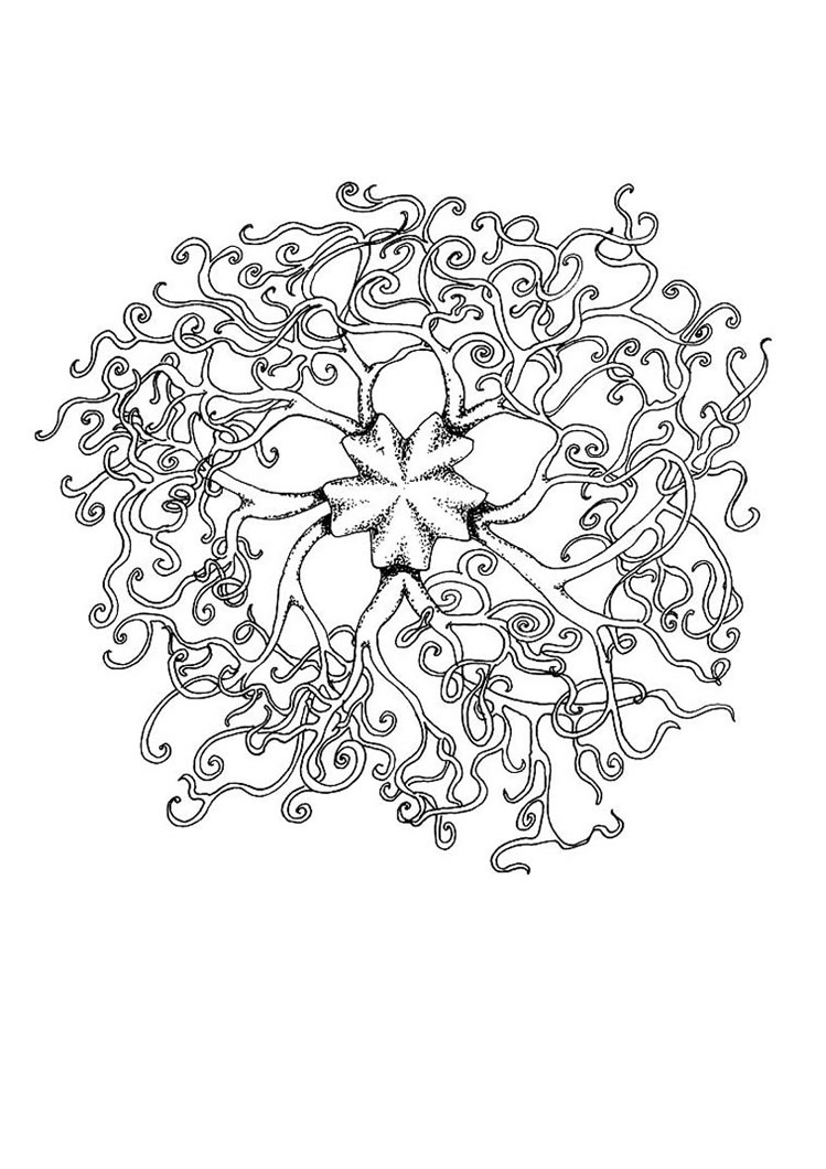 Collection Mandala Coloring Pages Of Animals 2 Pictures ...
